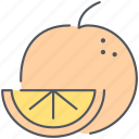food, fruit, healthy, juice, kitchen, orange, organic icon