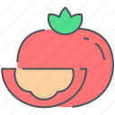 food, healthy, kitchen, organic, tomato, vegan, vegetable icon
