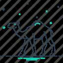 animal, camel, caravan, desert, journey, omnivores, pet