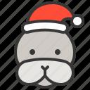 animal, arctic, christmas hat, seal, wild, xmas icon