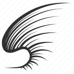 bird, brush, feather, line, wing icon