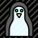 animal, bird, penguin, winter
