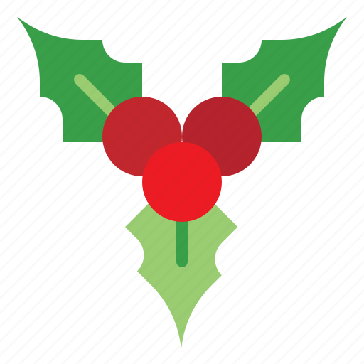 Christmas, festival, holiday, mistletoe icon - Download on Iconfinder