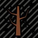 autmun, branch, plant, snow, tree, winter