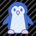 animal, ice, penguin, winter