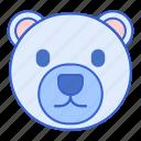animal, bear, north pole, polar