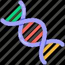 dna, gene, deoxyribonucleic acid, chromosome, genetics