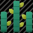 bamboo, plant, botanical, garden, leaf, nature, branch