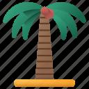 coconut, tree, nature, coconut tree, island, trees