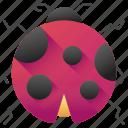 ladybug, animal, insect, animals, bug, ladybird, animal kingdom icon