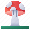 mushrooms, nature, mushroom, fungi, muscaria, amanita