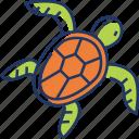 turtle, animal, tortoise, sea, ocean, wildlife, nature