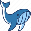 whale, animal, fish, sea, ocean, mammal, aquatic
