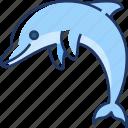 dolphin, fish, sea, animal, mammal, ocean, marine