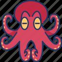 octopus, animal, sea, fish, ocean, wildlife, aquatic