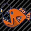 fish, angler fish, animal, sea animal, wildlife, sea, ocean