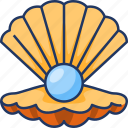 shell, nature, pearl, sea, ocean, sea life, animal