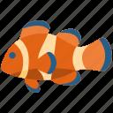 clownfish, animal, fish, ocean, aquatic, marine, sea