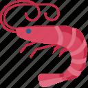 shrimp, sea, ocean, nature, animal, pet, prawn