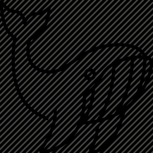 Whale, animal, fish, sea, ocean, mammal, aquatic icon - Download on Iconfinder