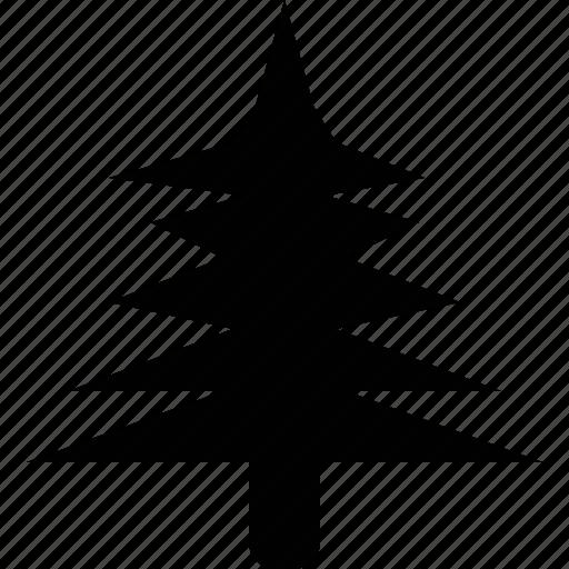 environment, nature, pine, tree, wsd icon