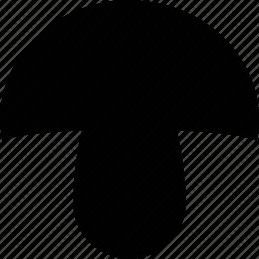 mushroom, nature, wsd icon