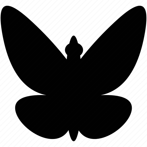 animal, animals, butterfly, nature, wsd icon