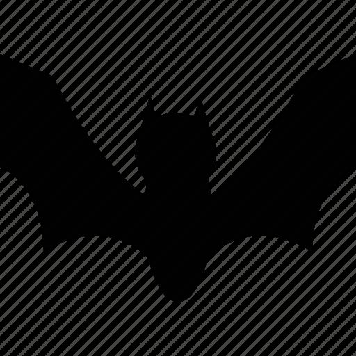 animal, animals, bat, nature, wsd icon