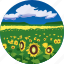 field, landscape, nature, parks, scenery, sunflowers icon