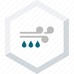 rain, windy icon