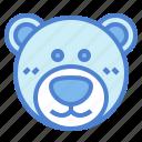 animal, bear, cute, fluffy