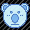 australia, bear, koala, zoo