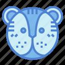 animals, face, lion, mammal icon