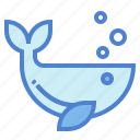 animals, life, sea, whale, zoo