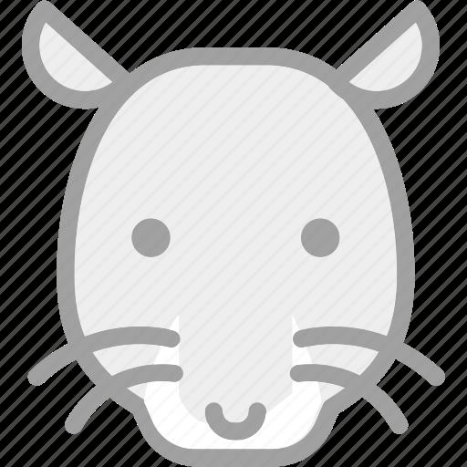 animal, mouse, rat, zoo icon