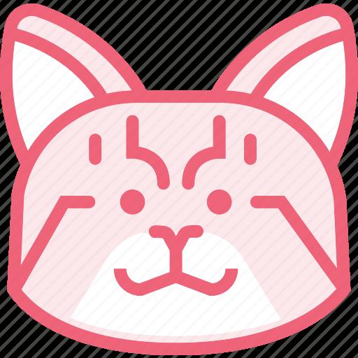 animal, cat, zoo icon