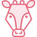 animal, cow, zoo icon