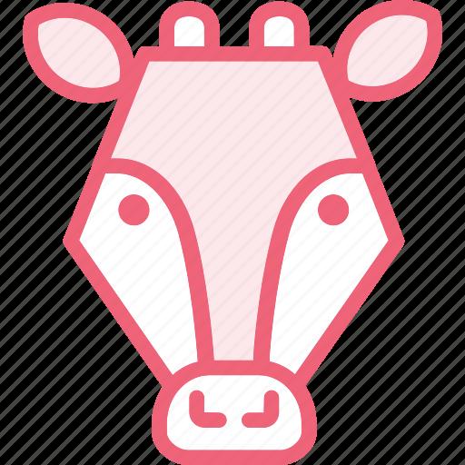 animal, cow, zoo icon