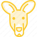 animal, kangoroo, zoo icon