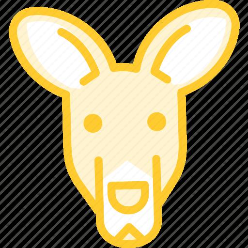 animal, kangoroo, zoo icon