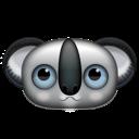 animal, koala