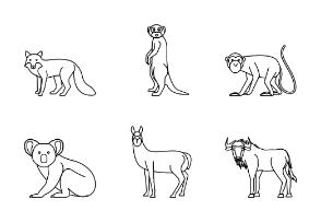 Animal Vol.2 - outline