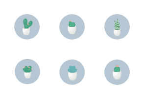Cactus  on blue for web