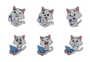 Grey cats' social life