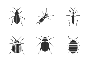 Insects. Glyph. Silhouettes