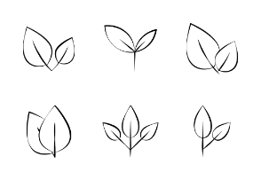Leaves Hand Drawn Vector Set