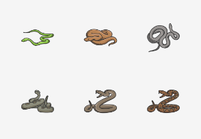 Reptiles - Colored