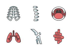 internal organs and bone Filled outline